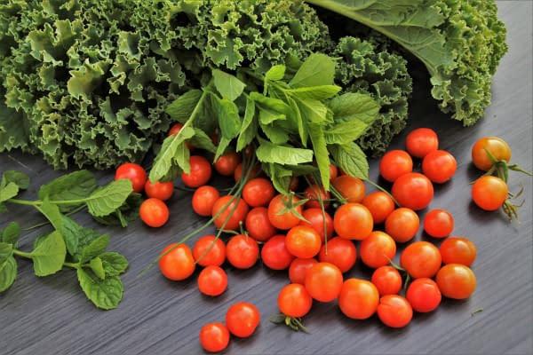 BioLifestyle-Tomaten